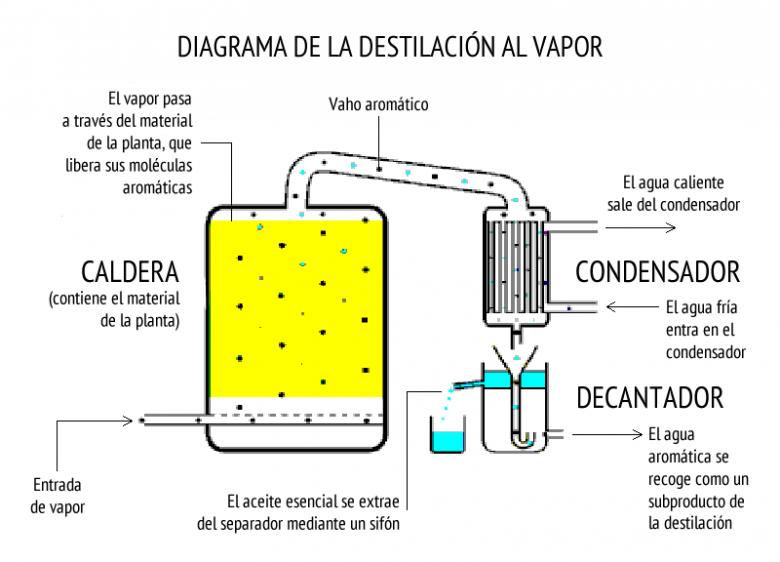 destilacion aceite esencial
