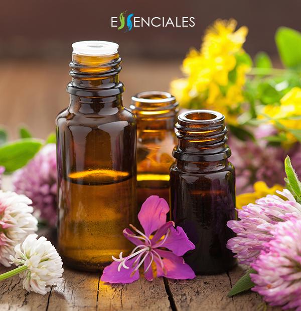 Envases de vidrio topacio ambar para aceites esenciales.